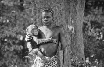 Ota Benga at the St. Louis World's Fair, 1904