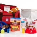 NADPD-Pet-Emergency-Go-Kit-photo